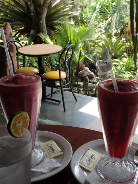 Batido, refresco, naturale, or just a fruit smoothie