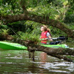 Calm Water Kayaking & Canoeing in Costa Rica