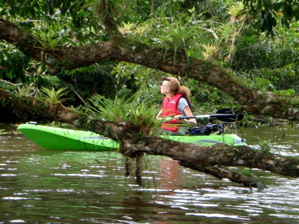 Kayaking in Cano Negro Costa Rica
