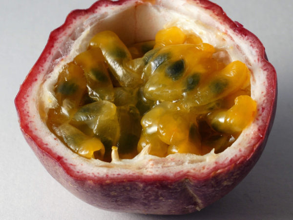 Passion Fruit - Passiflora edulis