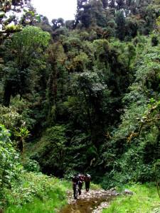 big valley La Amistad