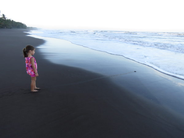 Girl Watching a Sea Turtle Hatchling Headed into the Surf