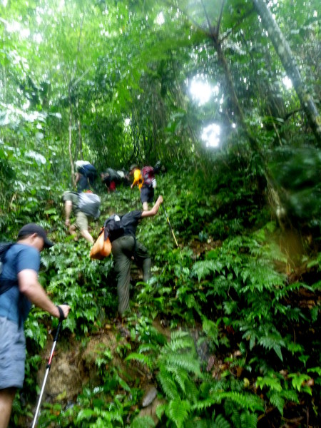 Whenever the riverbank became too steep or rugged to follow we climbed almost ladder steep straight up and over ridges