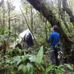 An illegal poacher's camp in the crater of Tenorio Volcano
