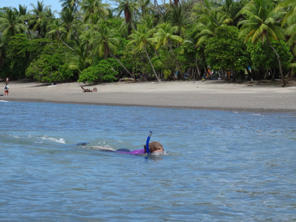 Snorkeling playa San Josecito south of Drake on the Osa Peninsula