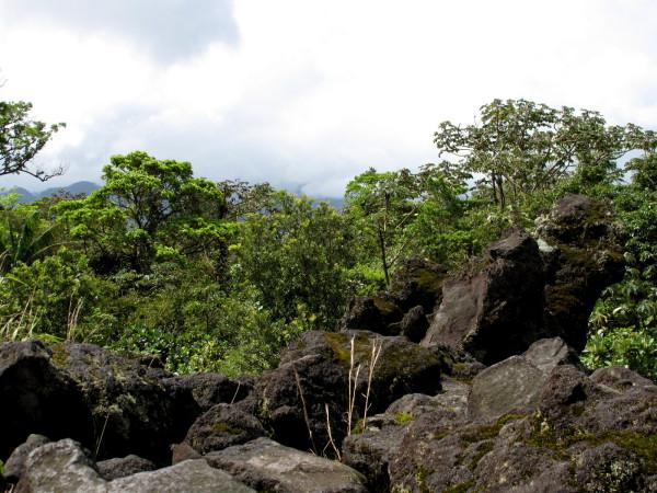 1992 lava flow-