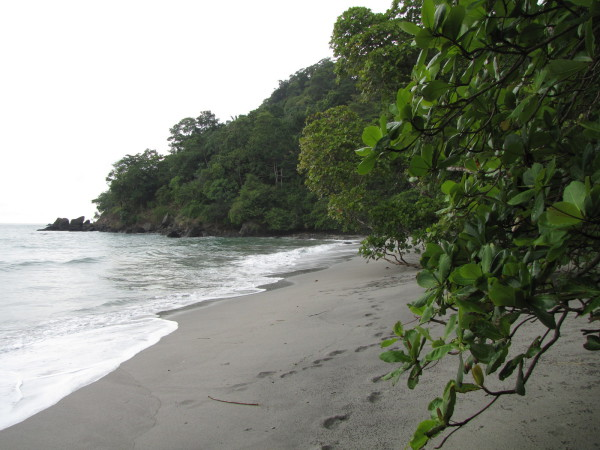 Playa Dulce de Vida northwest of Espadilla Manuel Antonio
