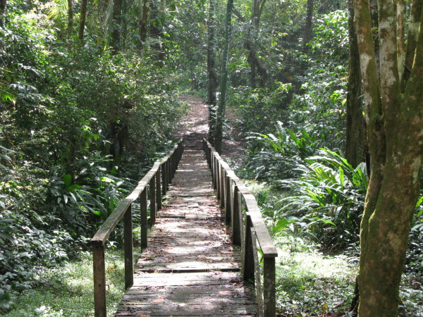 Gandoca Manzanillo Wildlife refuge