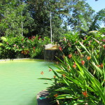 Hot springs pool a the Blue River Resort northwest of Rincon de la Vieja
