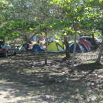 Campgrond at Playa Manzanillo Costa Rica - there are no facilities but you can pitch a tent in the shade