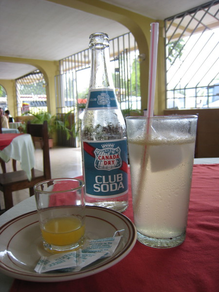 One of my favorites is Club Soda with orange lime juice. The only problem is that it comes in those little tiny bottles and I have to order three or four