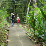 A good guide will enhance your experience when walking in Costa Rica