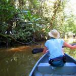 Sue in a canoe on a Tortuguero sendero