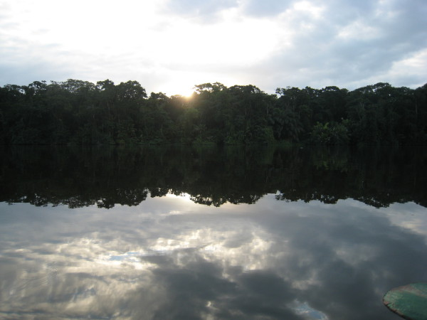 Trees reflected in Lago Tortuguero at sunrise, northern Caribbean Costa Rica. This was a long day. We saw the sun climb out of the Atlantic and in the evening watched it drop into the Pacific near Tarcoles after a collectivo boat ride, a km or two hiking with our gear because the water level was too low to reach the end of the road, a collectivo bus, a public bus to San Jose where we picked up a rental car and headed west.
