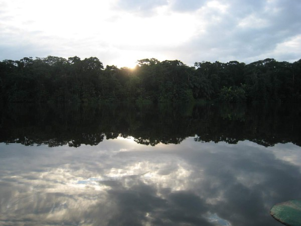 Trees reflected in Lago Tortuguero at sunrise, northern Caribbean Costa Rica. This was a long day. We saw the sun climb out of the Atlantic and in the evening watched it drop into the Pacific near Tarcoles.