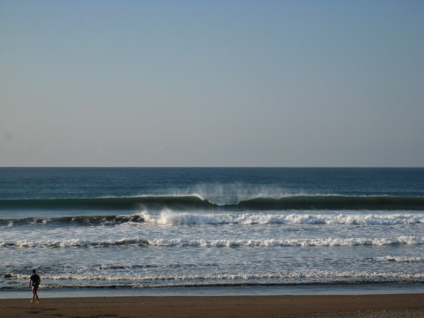 Playa Camaronal south of Samara on the central Nicoya peninsula is both a famous surf break and an important wildlife reserve and turtle nesting site