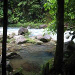 One of the natural hot pools along the shores of the Río Celeste