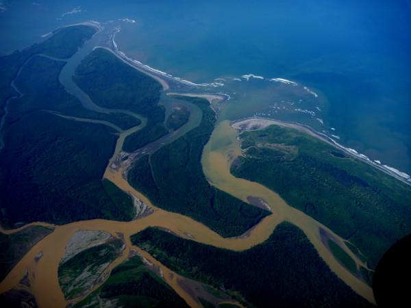 Terraba Sierpe mangrove estuary from the air