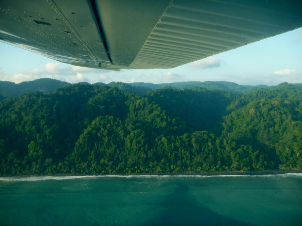 We've hiked this Osa coastline from Sirena to Madrigal in Corcovado National Park and it was a thrill to see it from above on an air taxi Alfaro .