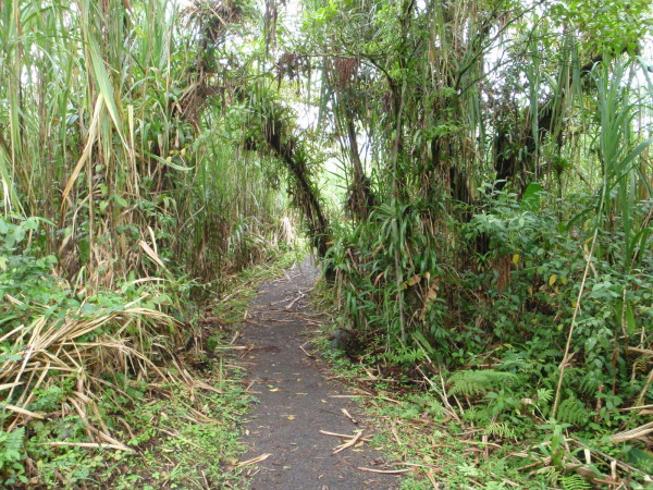 cane trail