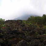 This lava flow from the early nineties has started to regenerate, Arenal Volcano National Park