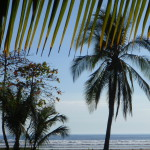 Best Things To Do January, February & March in Costa Rica