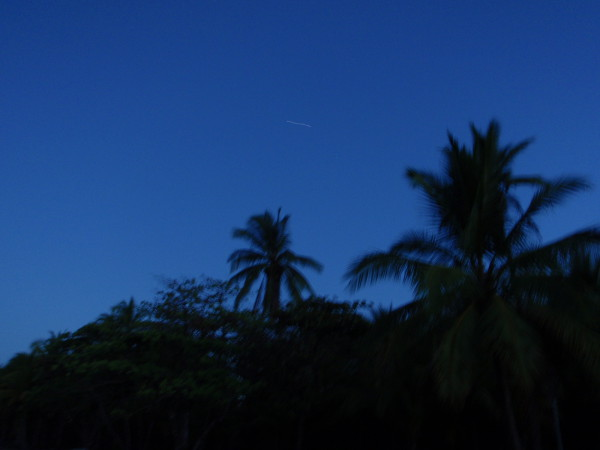 A satellite squiggles across the sky above playa Matapalo