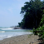 Playa Tamales faces the Golfo Dulce from the Osa