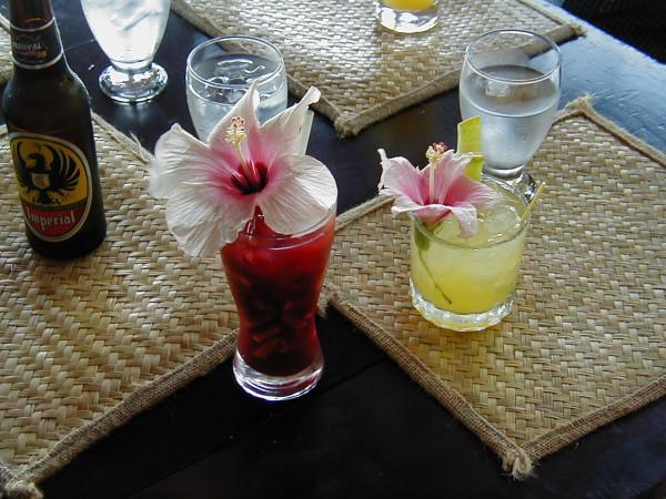 Umbrella drinks? A hibiscus flower will do!