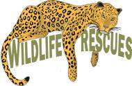 wildlifeRescues