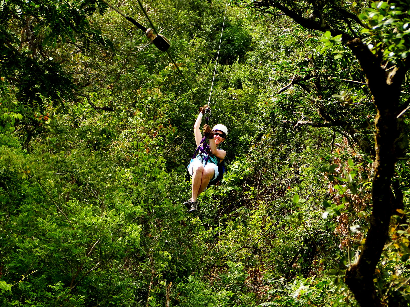zipline & Canopy Tours History and Origins