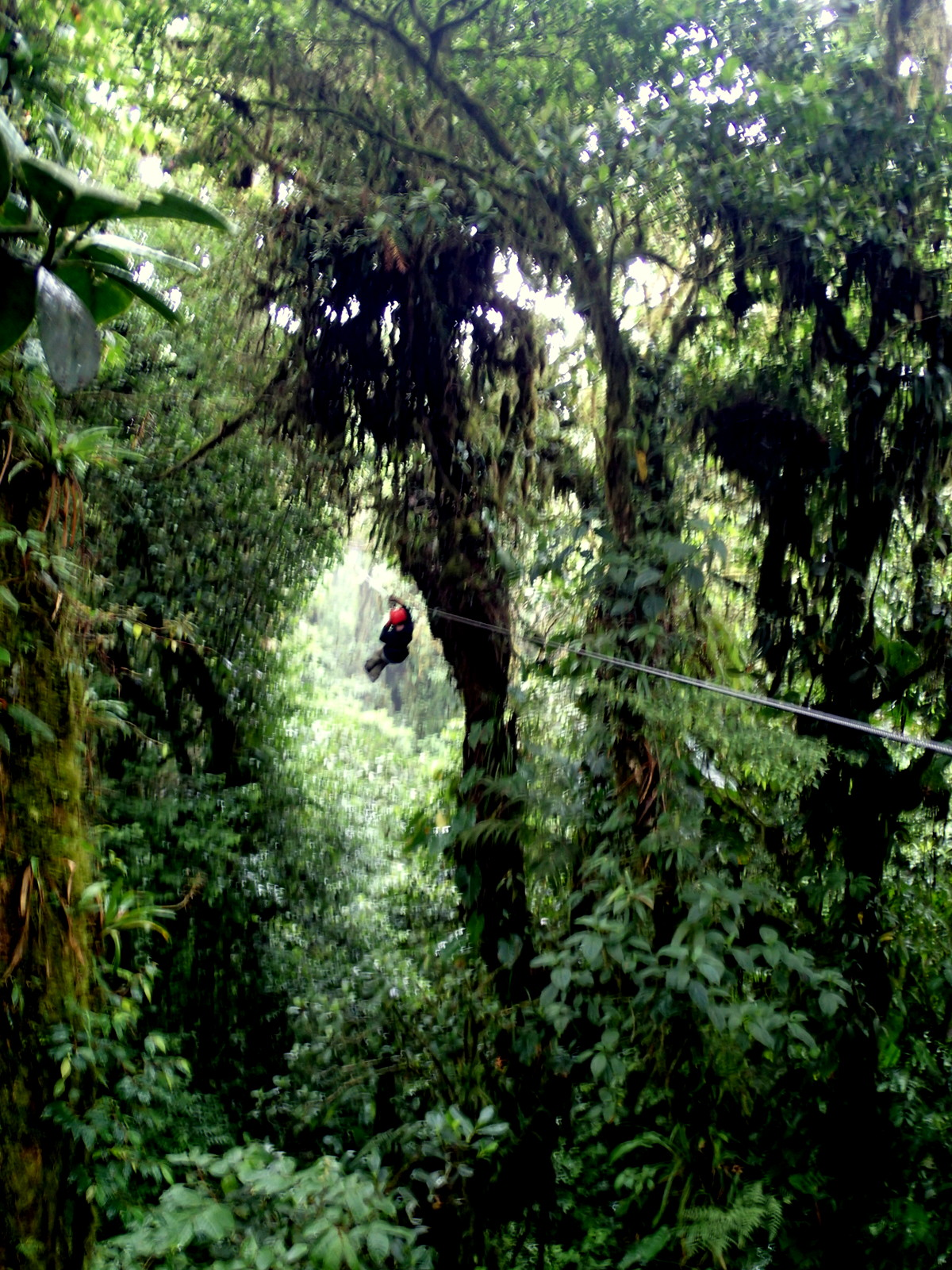 Zip through the gap & Zip-Line Canopy Tours in Costa Rica