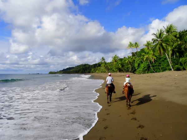 Horses on Playa San Josecito south of Drake Bay Osa Peninsula