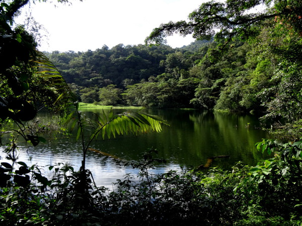 Laguna Poco Sol near the end of the trek down from Monteverde