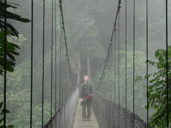A suspension bridge disappears into the cloud forest canopy