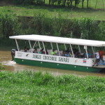 Crocodile tour boats come up the Tarcoles river