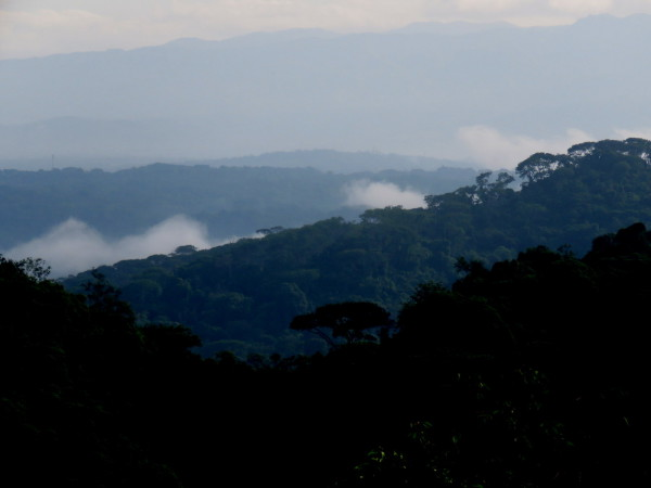 Layers of rainforest mist shrouded hills
