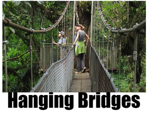 Suspension and hanging canopy bridges in Costa Rica