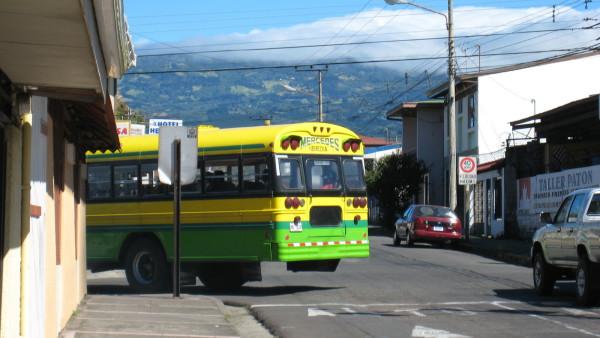 missed the bus