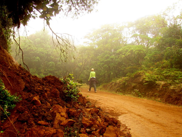 Hiking Cerro Amigos Costa Rica