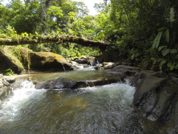 The Rio Portalon near where it's joined by Quebrada Salto