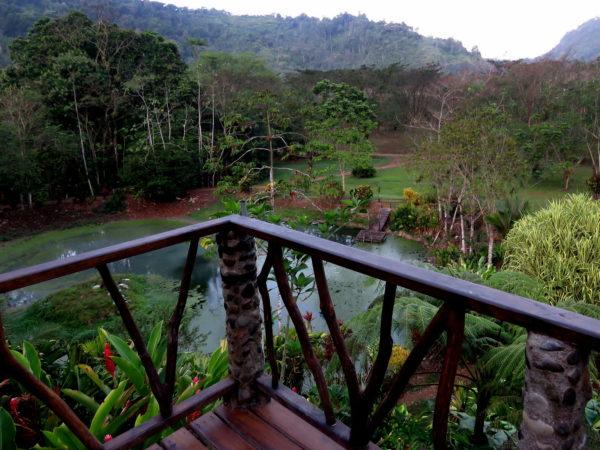 Rafiki Lodge deck and pond