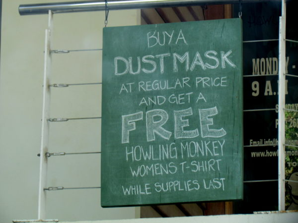 free with dust mask purchase