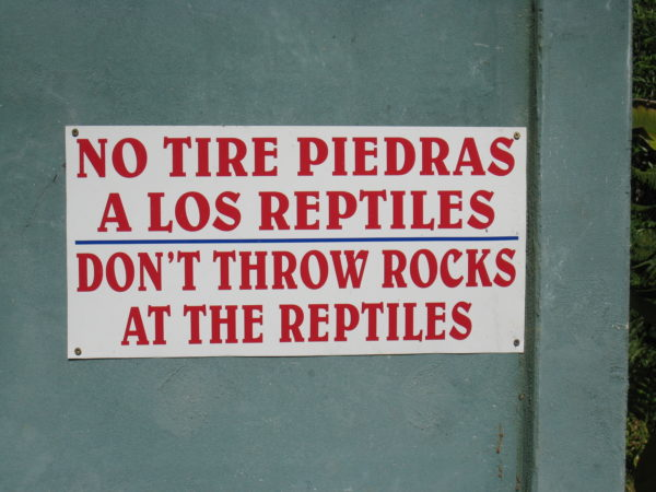 don't throw rocks