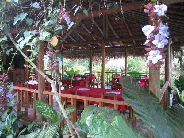 Open air restaurant at Hacienda Barú serves delicious meals (breakfast is included when you stay), fresh bebidas naturales and ice cold beer