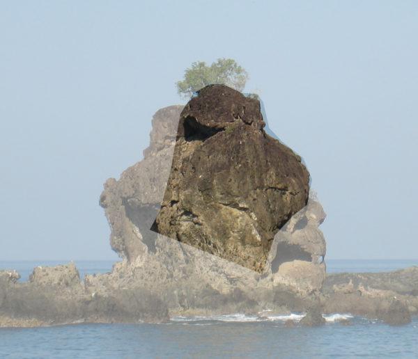 gorilla rock