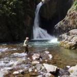 San Gerardo de Dota National Park