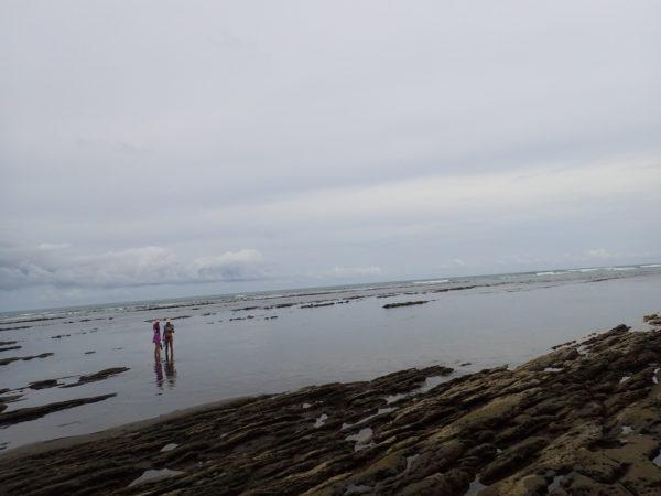 rocky shoals