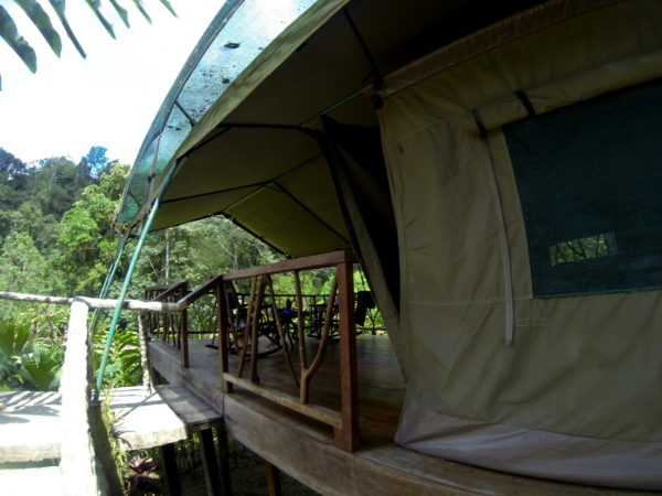 rafiki safari tent