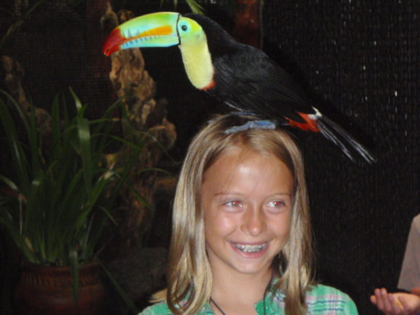 Toucan on her head